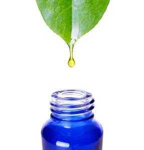 plant oil dropping into Zen bottle SML