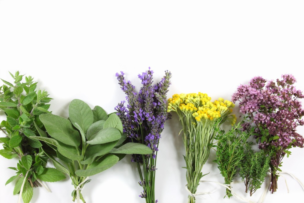 Lavender, Helichrysum, Peppermint and More