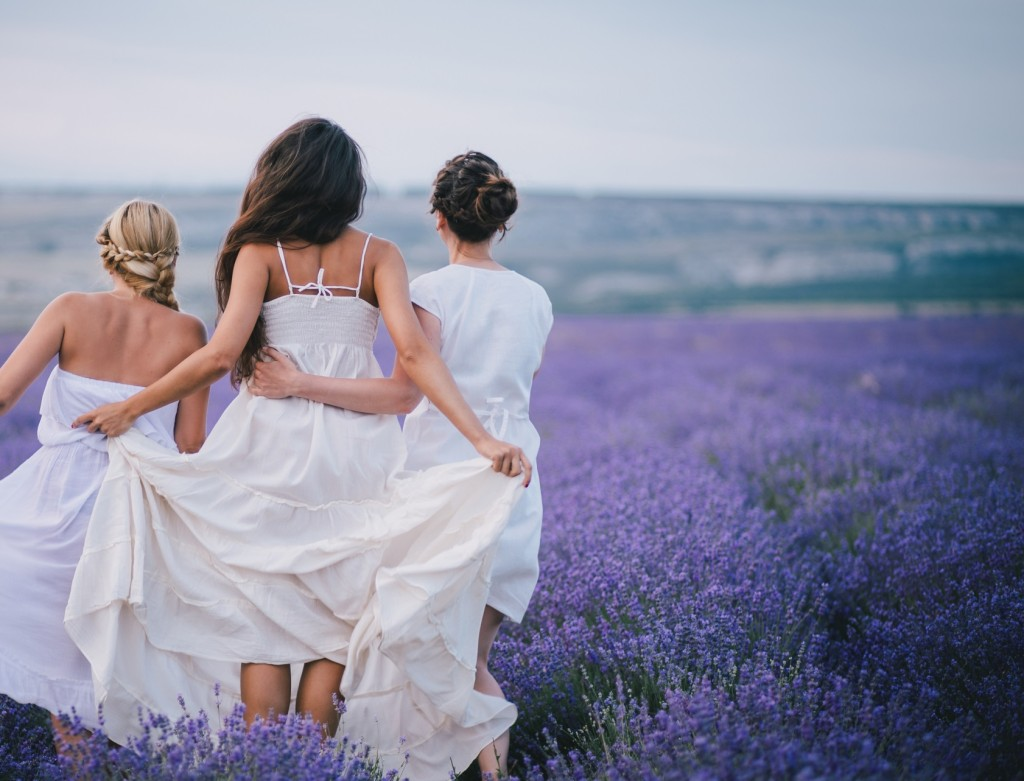 lavender fields girls LP